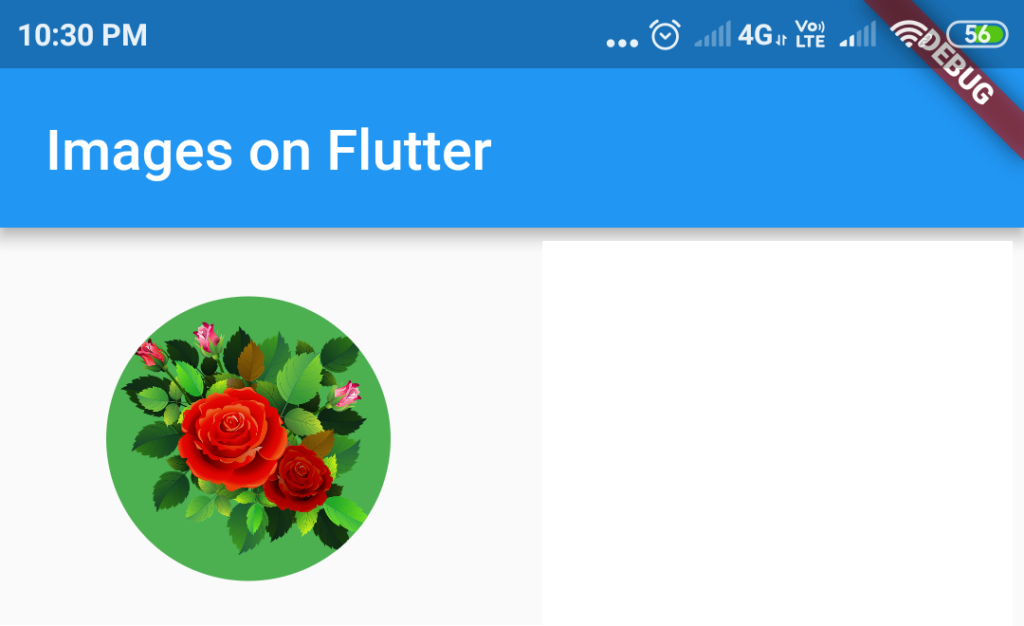Circle avatar on flutter