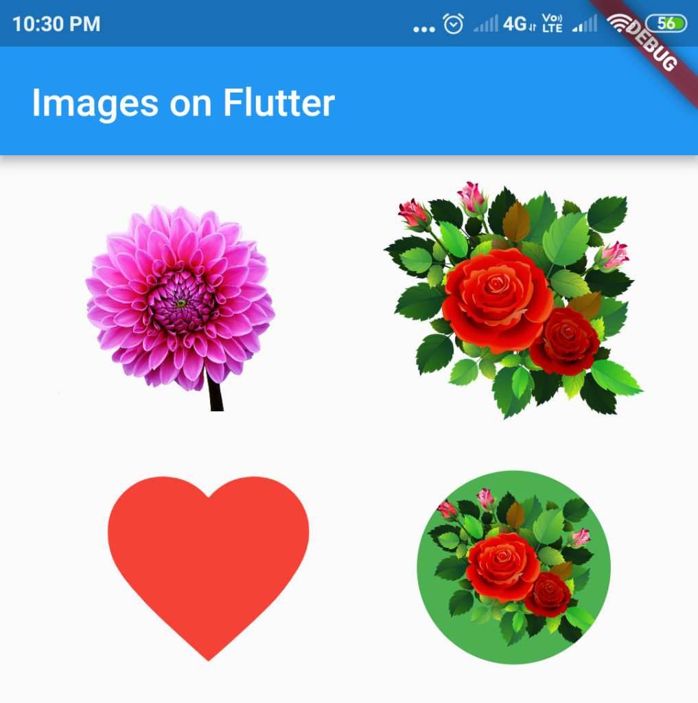 images icons circle avatar on flutter