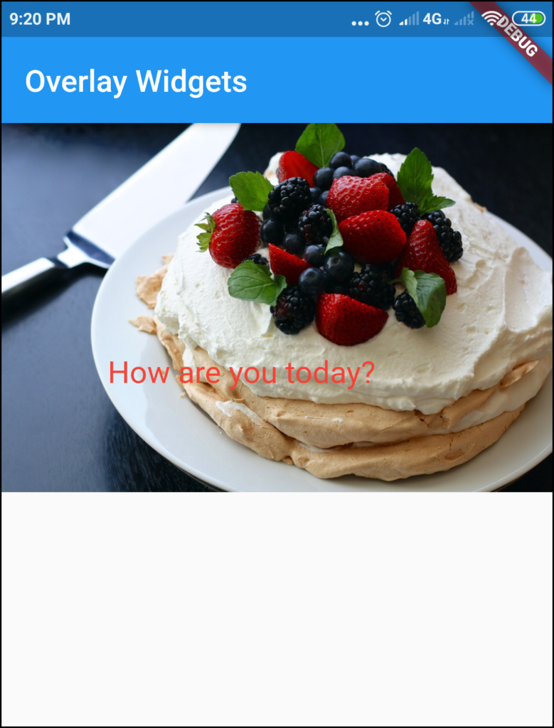 Text on image with padding space